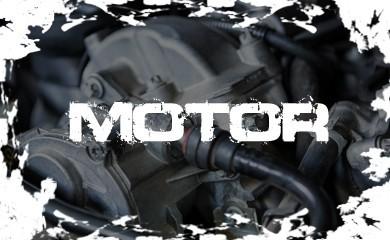 Comprar Motor en MotoQuad Magina